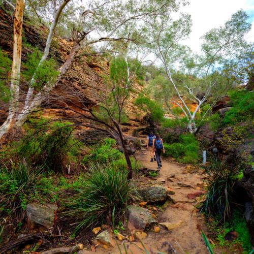 Z Bend River Trail Kalbarri National Park